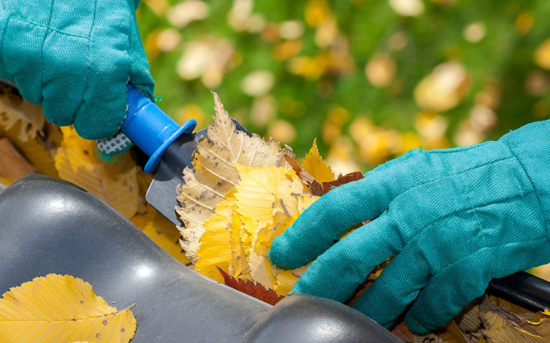 5 Tasks to Prepare Your Home for Fall