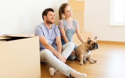 3 Smart Tips for Moving with Pets